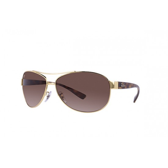 e6ac23fddeb7 Ray-Ban Sunglasses RB3386 Gold   Tortoise Frame With Brown ...
